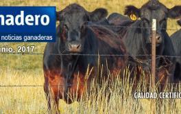 En Formosa, logran mil kilos de carne por hectárea