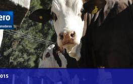 Reclaman una recomposición urgente en el precio de la leche