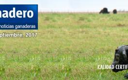 Apuran una ley de seguros por las pérdidas climáticas para el campo