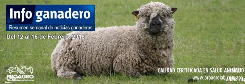 """Ganadería bovina Argentina: """"necesitamos mejorar la producción del norte y oeste argentino"""""""