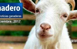 Argentina amplió el mercado de carnes para exportar a Singapur