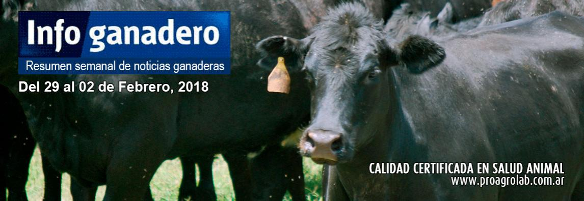 Ni bife ni lomo: el corte bovino más vendido por Argentina fue el hígado