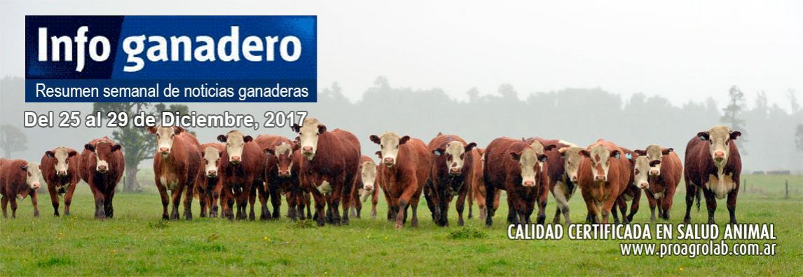 Declaran a la región patagónica libre de brucelosis ovina y caprina