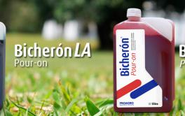(Español) ¿Sabía usted… que los antiparasitarios Bicherón Pour On y Bicherón Pour On LA de Proagro son muy efectivos para combatir parásitos externos?