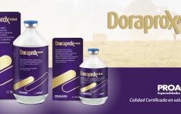 ¿Sabía usted… que con DoraProx AD3E de Proagro no sólo desparasita y controla las bicheras sino que aporta vitaminas AD3E a su rodeo?