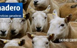 ¿Cuál es el rol del servicio de inspección veterinaria en los frigoríficos de Argentina?