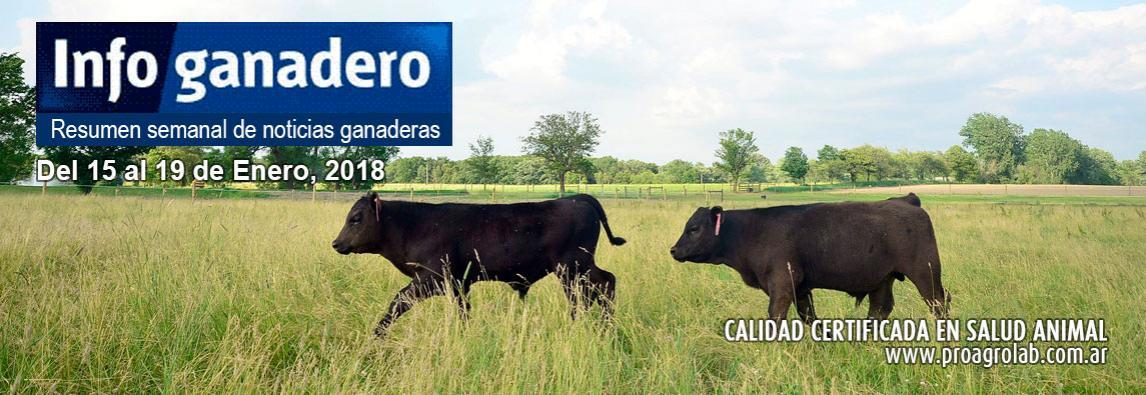 Recomendaciones para el cuidado de bovinos ante el calor extremo