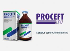 Proceft LPU