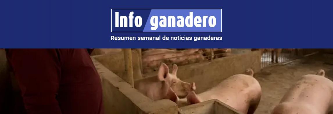 Peste porcina en China: la Argentina podría exportar más carne bovina y de cerdo pero menos soja