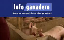 (Español) Peste porcina en China: la Argentina podría exportar más carne bovina y de cerdo pero menos soja