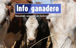 Resistencia antimicrobiana: información para la acción