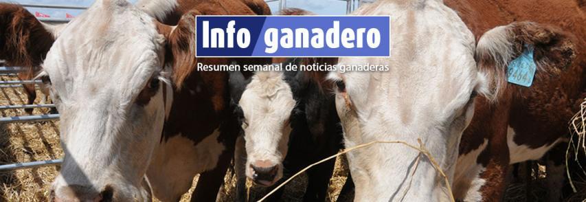 (Español) Resistencia antimicrobiana: información para la acción