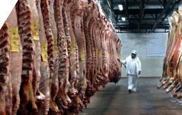 (Español) Exigencias para exportar carne a la Unión Europea