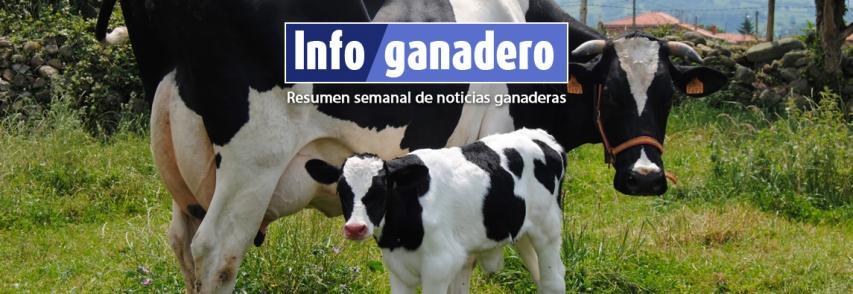 (Español) El manejo del estrés en el preparto mejora la producción de los terneros en el tambo