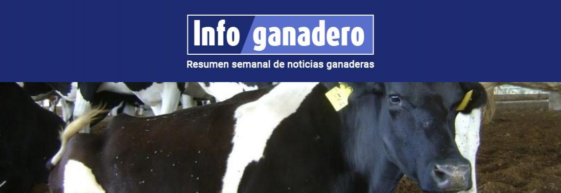 (Español) Bienestar animal. Alerta, gente mirando