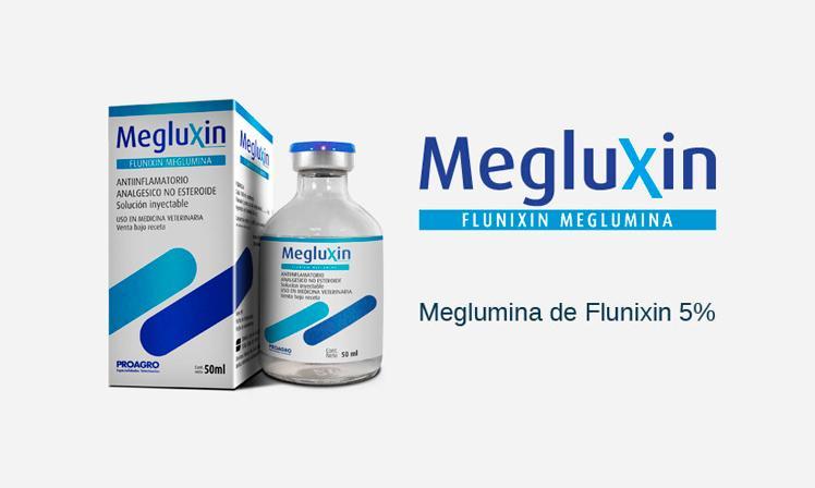 Megluxin