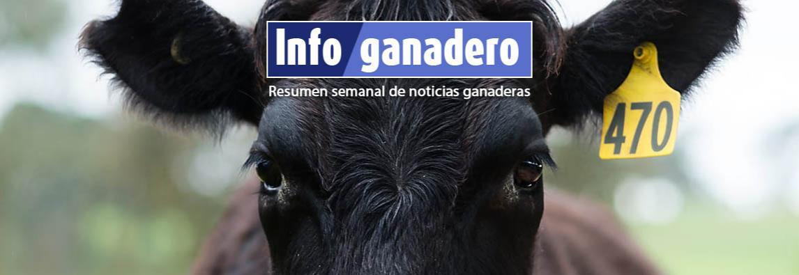 (Español) Respaldo digital: la plataforma ganadera en donde los productores se validan entre sí
