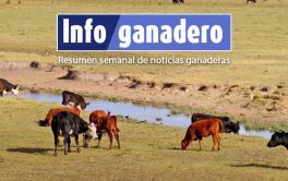 Los resultados del Censo Nacional Agropecuario