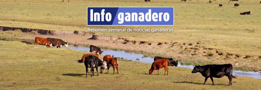 (Español) Los resultados del Censo Nacional Agropecuario