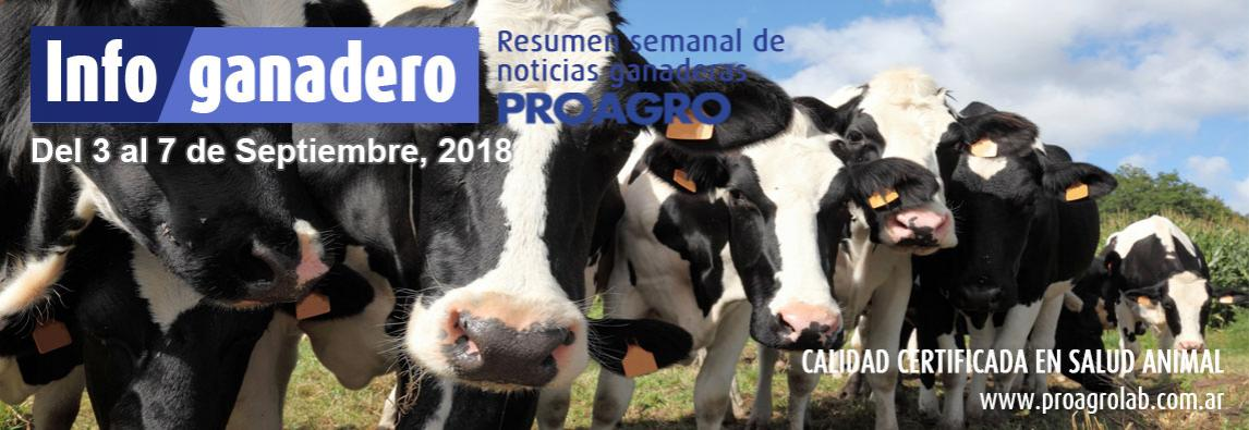 Confirman que Argentina comenzará a exportar carne de cerdo a China