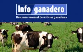 (Español) Detectan por primera vez un tipo de patógeno que afecta al rodeo lechero