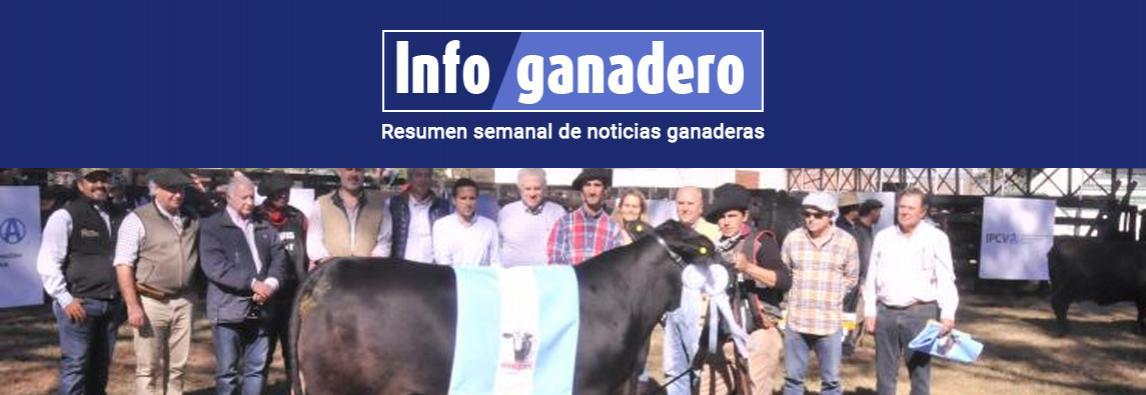 (Español) Pagaron $1.000.000 por el 50% de una hembra Brangus en Chaco