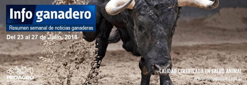 Nuevo mercado: la grasa bovina argentina llega a Marruecos