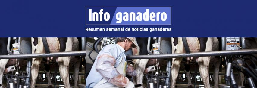 (Español) El precio de la leche en tranquera sigue en alza: superó los $ 15 por litro