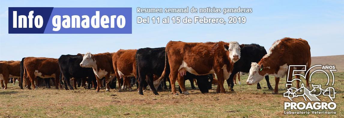 ¿Cuántos kilos de novillo hay que vender hoy para comprar una vaca preñada?