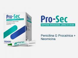 Pro-Sec