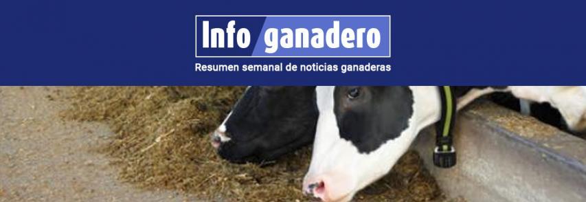 (Español) Herramienta para el tambo: cómo funciona el monitoreo inteligente para vacas lecheras
