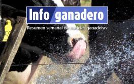 (Español) En verano, con calor y barro, baja 30% la producción de leche