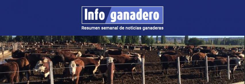 (Español) Desde Europa llegó otra buena noticia para las carnes argentinas