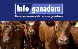 (Español) Argentina exportará bovinos en pie a Kazajistán libres de fiebre aftosa con y sin vacunación