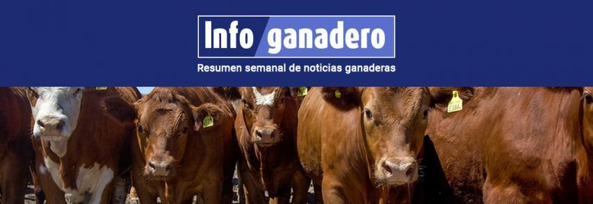 Argentina exportará bovinos en pie a Kazajistán libres de fiebre aftosa con y sin vacunación