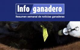 (Español) Está en vigencia el nuevo plan nacional de control y erradicación de brucelosis bovina