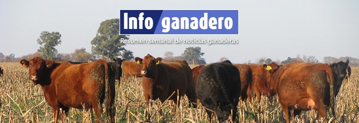 (Español) El INTA brinda recomendaciones para evitar intoxicación en el rodeo