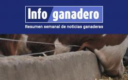 (Español) Exposición Rural: ¿qué es el RFI, nuevo objetivo de la selección genética?