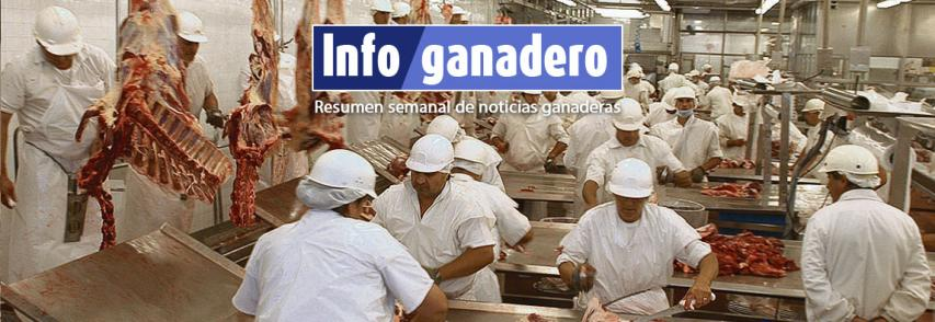 (Español) Proyectan que la producción de carnes puede crecer 40% en 6 años