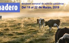 (Español) Carnes rosarinas llegarán con marca propia a góndolas de todo el mundo