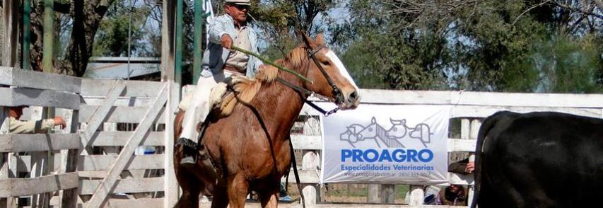 Laboratorio Proagro nuevamente en los principales remates ganaderos