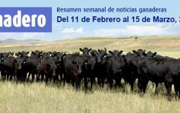 (Español) En 2019 la exportación se llevaría hasta el 25% de la producción de carne vacuna
