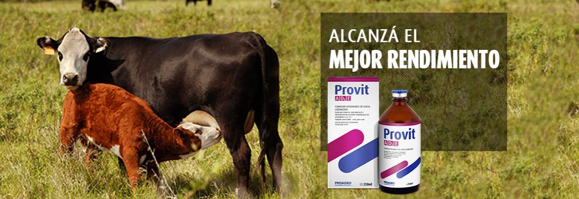 (Español) ¿Cómo el estrés oxidativo afecta el estado de los bovinos?