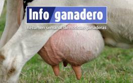(Español) Tambo: Disminuir las pérdidas económicas por Mastitis es posible