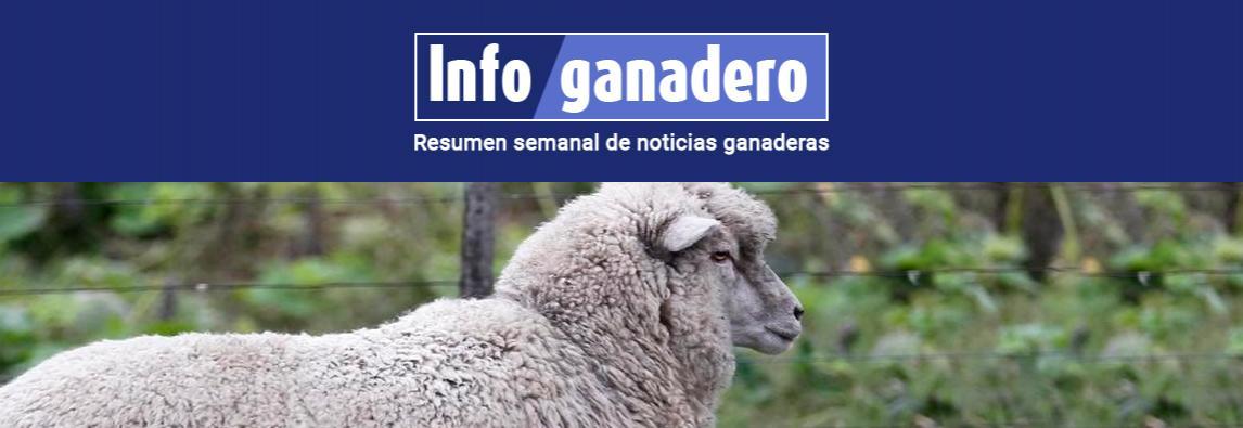 Buscan impulsar el consumo de carne ovina