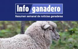 (Español) Buscan impulsar el consumo de carne ovina