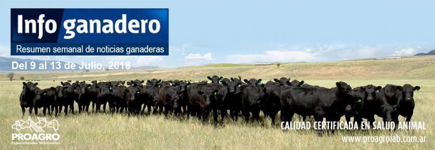Qué valor tiene la carne argentina para el máximo comprador a nivel mundial