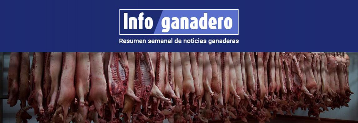 (Español) Avances en las negociaciones con China por la carne de cerdo argentina