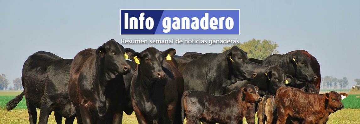 (Español) Claves para un rediseño competitivo de la ganadería pampeana