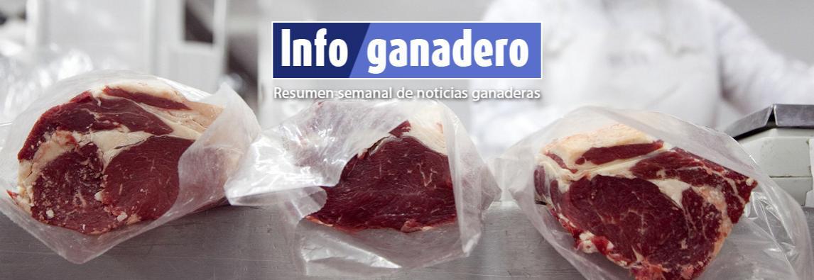 (Español) Las exportaciones de carne lograron el mayor registro mensual en 14 años